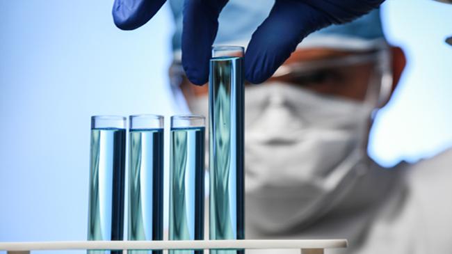 Enfeksiyöz bursal hastalığına karşı aşılamada maternal kaynaklı antikorların etkisi